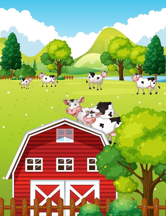 Landbouwbedrijfscène met koeien en schuur stock illustratie