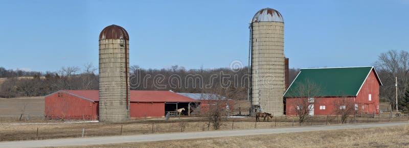 Landbouwbedrijfscène met paarden royalty-vrije stock afbeelding