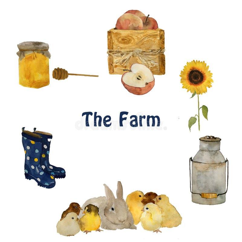 Landbouwbedrijfvoorwerpen en dieren: grijs pluizig hazenkonijn, klein geel kuiken, nest met eieren, gumboots en geïsoleerde zonn stock afbeelding