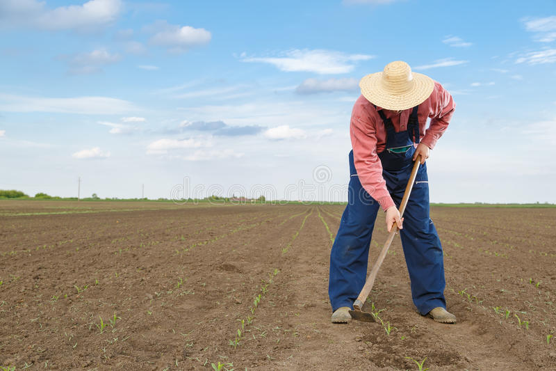 Landbouwer royalty-vrije stock afbeelding