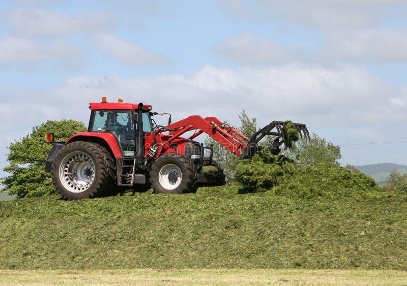 Landbouwer bij de tractorverpakking onderaan kuilvoederstapel stock afbeelding