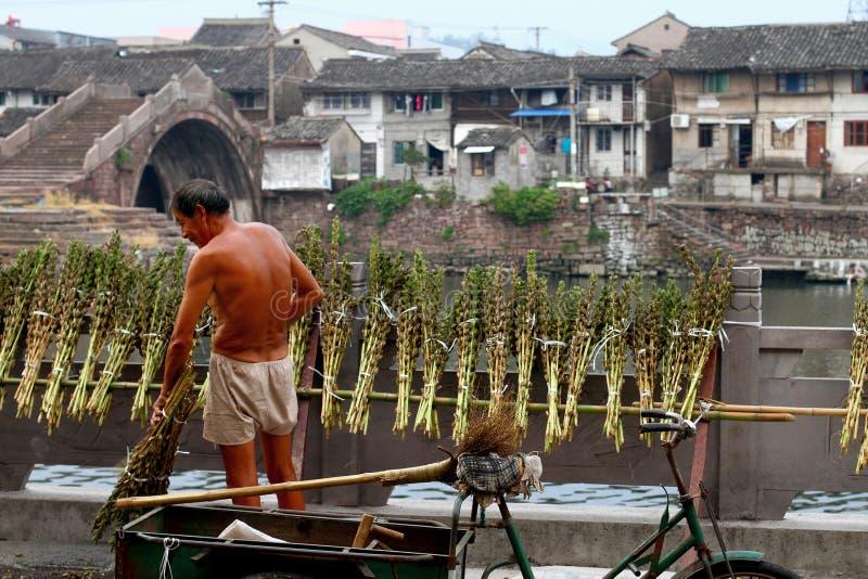 Landbouwer bij het werken stock foto's