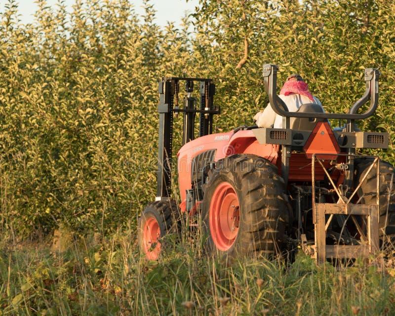 Landbouwer Bringing in de Appelen stock fotografie