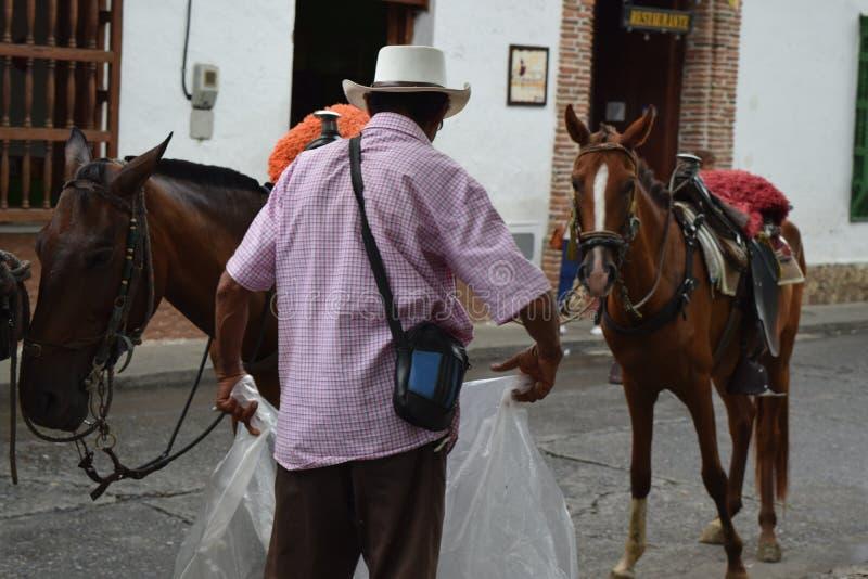 Landbouwer die met zijn paarden in Santafe DE Antioquia, Colombia werken stock afbeelding