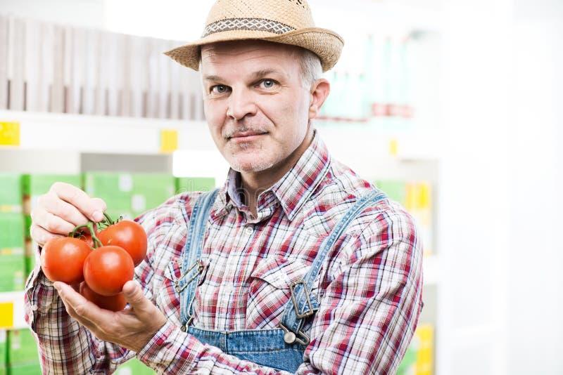 Landbouwer die verse geoogste tomaten houden stock foto's