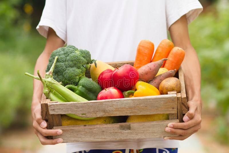 Landbouwer die verse groente en vruchten dragen royalty-vrije stock afbeeldingen