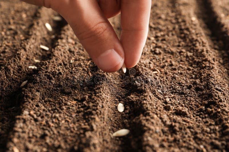 Landbouwer die zaden planten in vruchtbare grond Het tuinieren tijd royalty-vrije stock fotografie