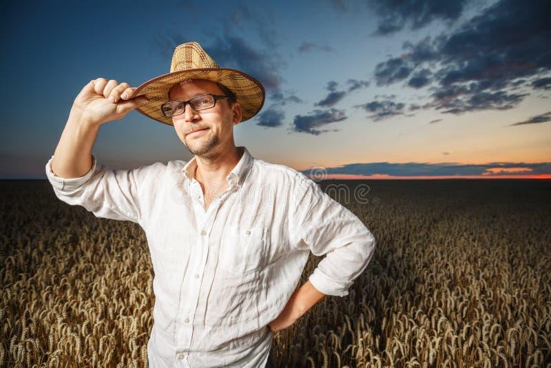 Landbouwer in een strohoed en glazen die zich op een rijp tarwegebied vóór zonsondergang bevinden stock afbeeldingen