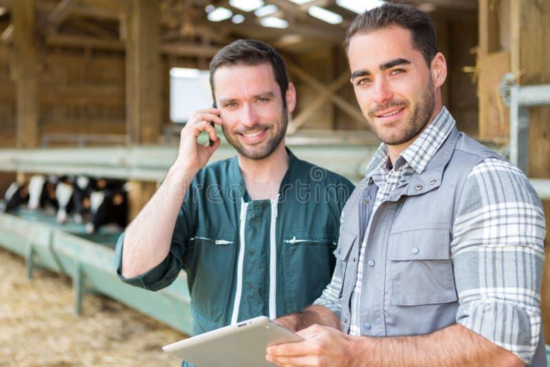 Landbouwer en het veterinaire samenwerken in een schuur royalty-vrije stock afbeeldingen