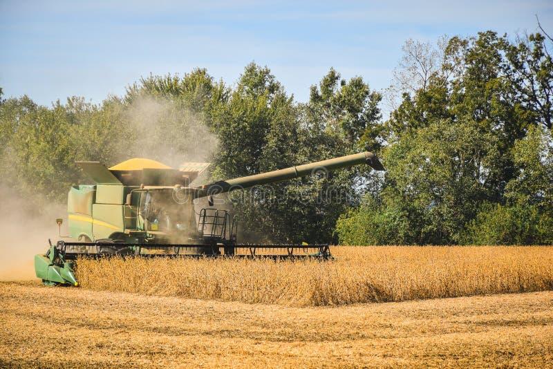 Landbouwer gebruiken combineert om sojabonen te oogsten royalty-vrije stock afbeeldingen