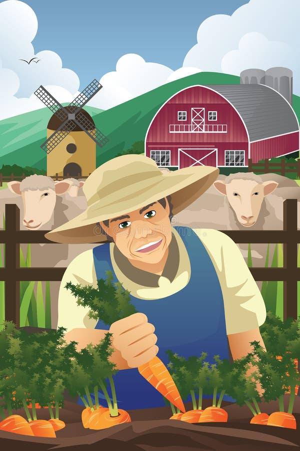 Landbouwer Harvesting Carrots royalty-vrije illustratie