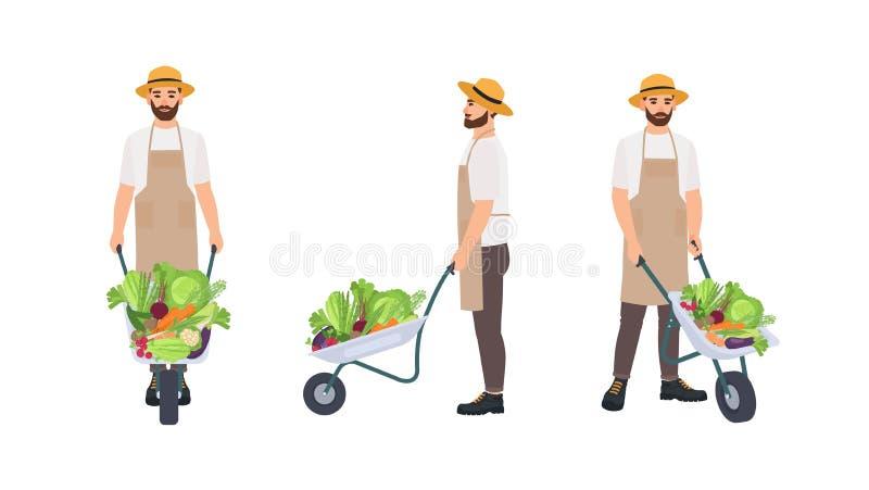 Landbouwer of landbouwarbeider die kruiwagenhoogtepunt van verzamelde gewassen trekken Mannelijk die beeldverhaalkarakter op wit  royalty-vrije illustratie