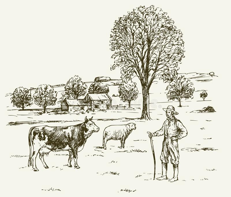 Landbouwer met de schapen van de koeadvertentie, landelijk landschap vector illustratie