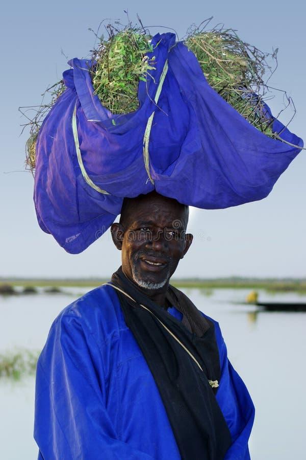Landbouwer met oogst in Mali royalty-vrije stock afbeeldingen
