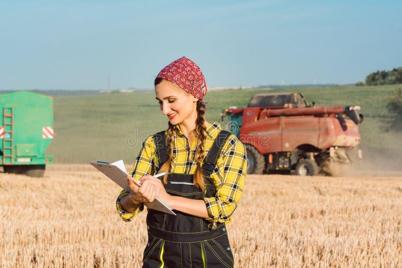 Landbouwer op het tarwegebied die boekhouding op de aan de gang zijnde oogst doen stock foto