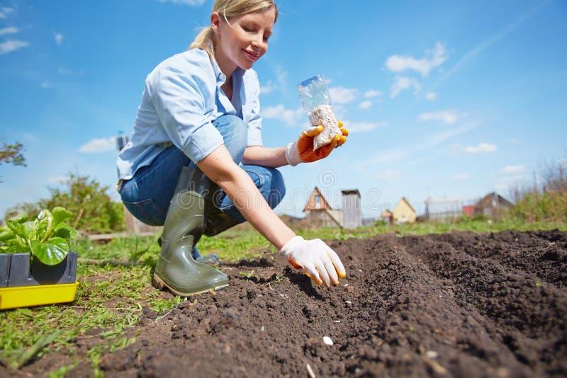 Landbouwer op het werk royalty-vrije stock afbeelding