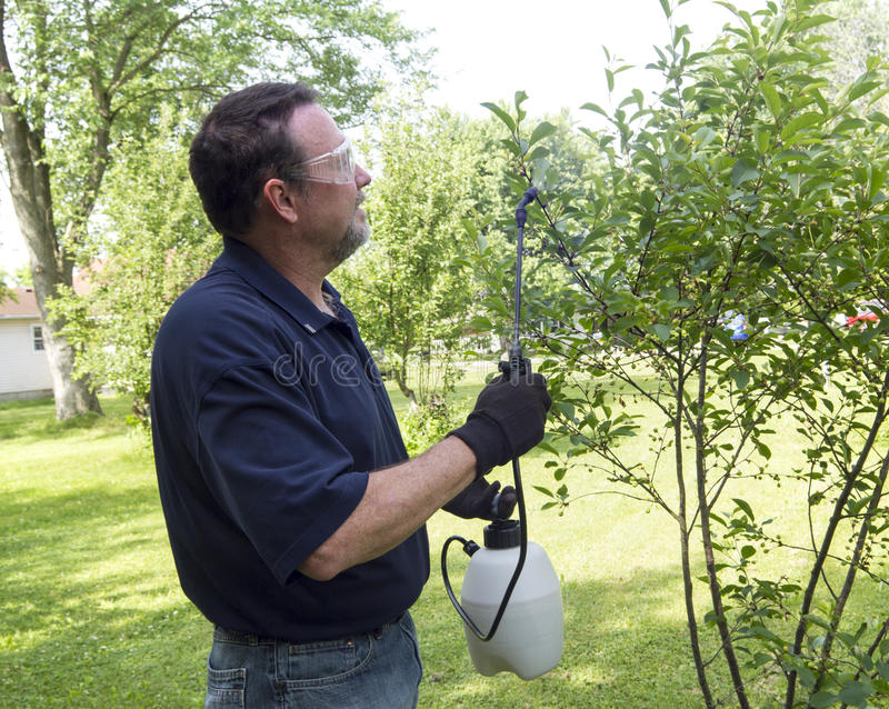 Landbouwer Using een Organische Nevel royalty-vrije stock afbeelding