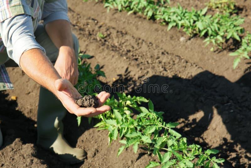 Landbouwer Working op Gebied stock foto