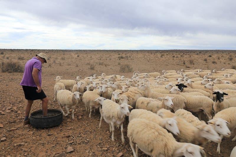 Landbouwer in Zuid-Afrika stock afbeelding