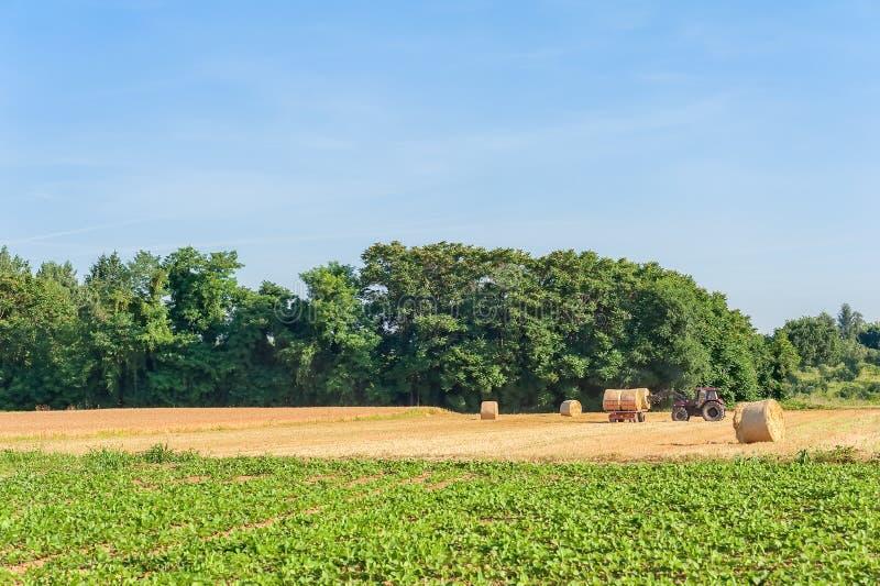 Landbouwers bewegende balen van hooi met tractor royalty-vrije stock afbeelding