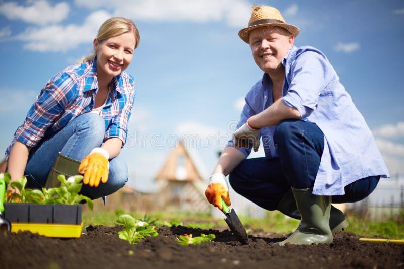Landbouwers in de tuin royalty-vrije stock foto