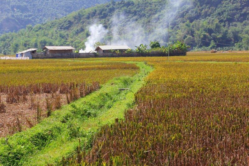 Landbouwers die huisvuilgebieden, Lakdorp, Vietnam branden stock fotografie