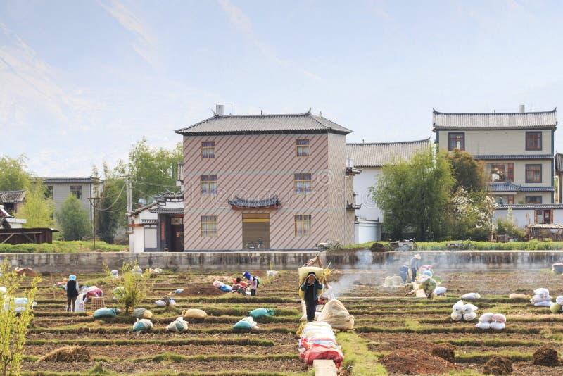 Landbouwers die op de gebieden in Heqing in Yunnan werken stock afbeeldingen