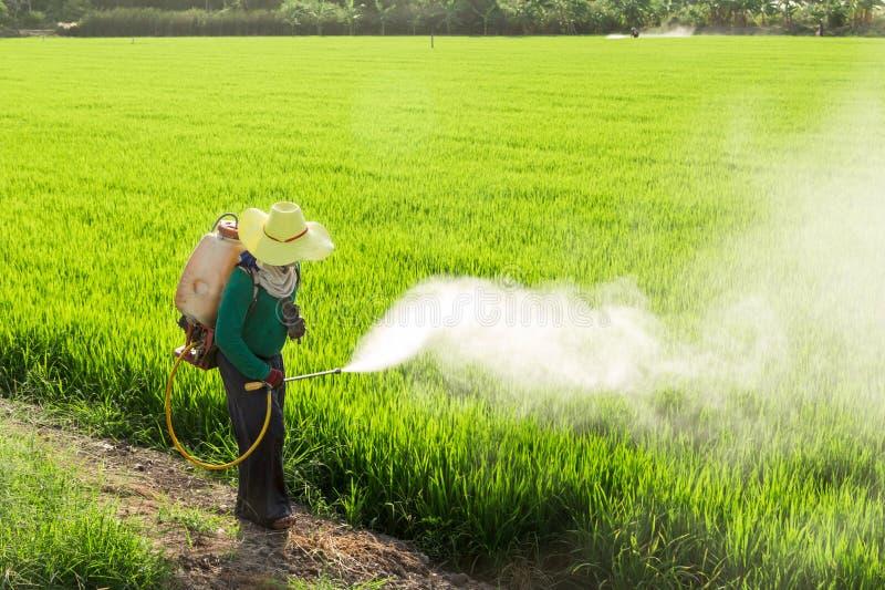 Landbouwers die pesticiden bespuiten royalty-vrije stock afbeelding