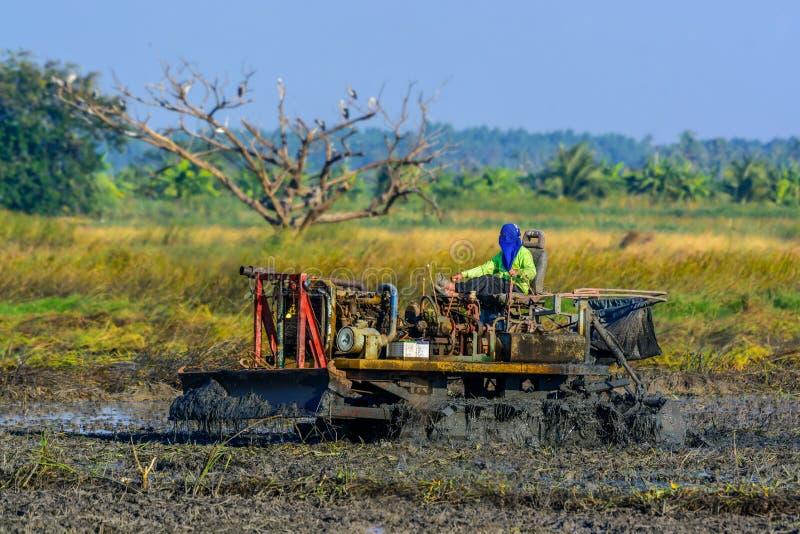 Landbouwers drijftractor op de gebieden royalty-vrije stock afbeelding