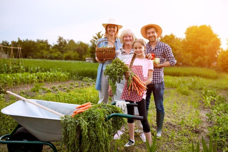 Landbouwers met vers geplukte groenten royalty-vrije stock afbeelding