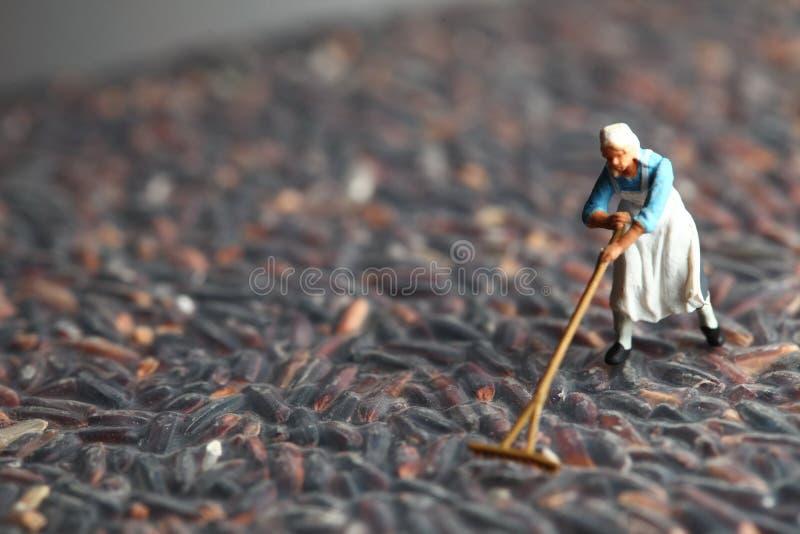Landbouwers modelscène stock afbeeldingen