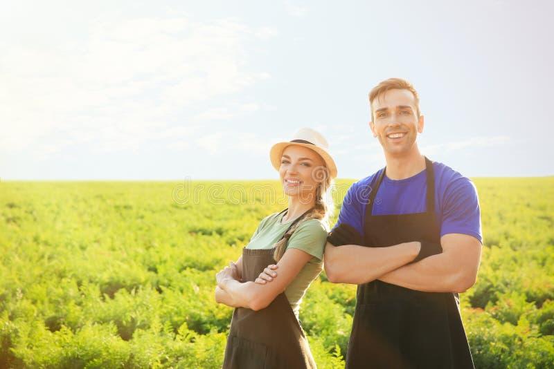 Landbouwers op gebied op zonnige dag royalty-vrije stock foto's