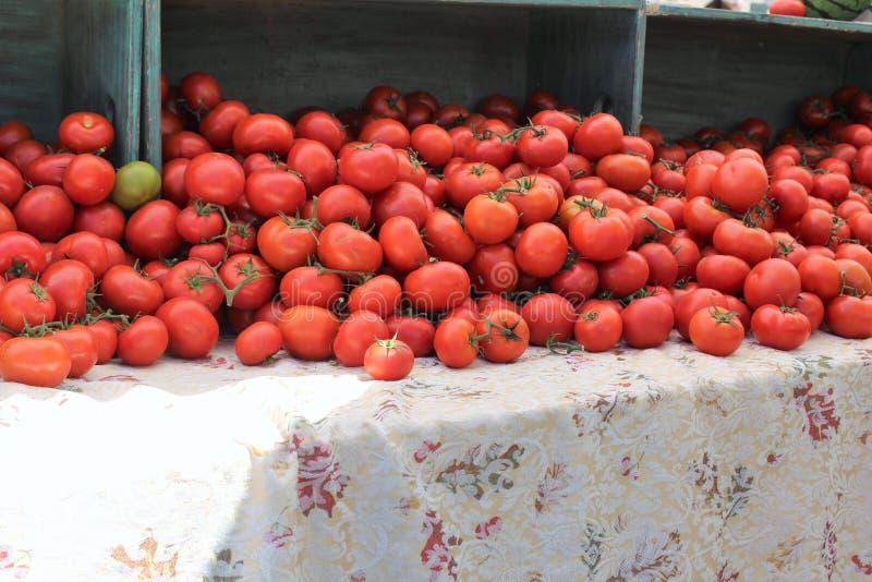 Landbouwersmarkt in Oude Scottsdale Van de binnenstad, Arizona, Verenigde Staten stock fotografie