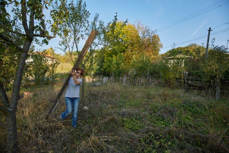 Landbouwersvrouw met een ladder in de boomgaard stock foto's