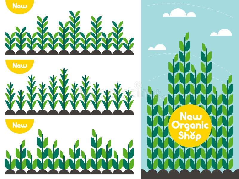 Landbouwgewaspatroon en het embleem van de natuurvoedingwinkel vector illustratie