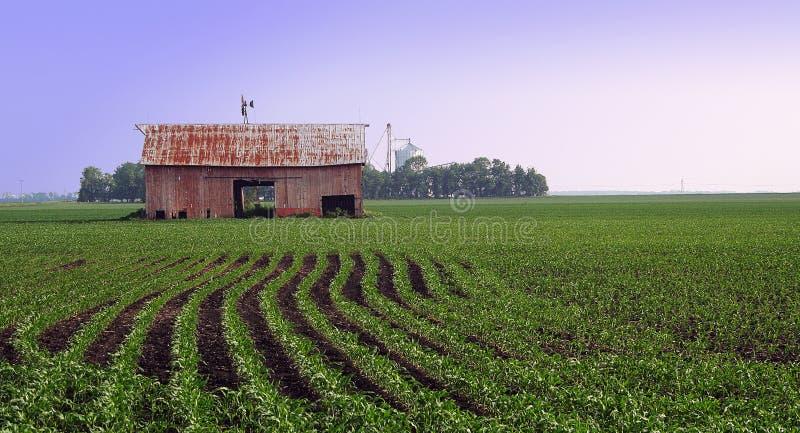 Landbouwgrond royalty-vrije stock fotografie