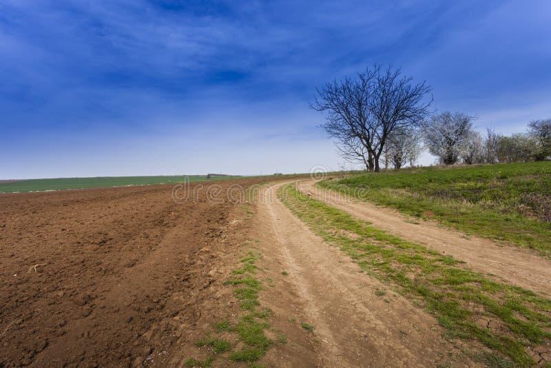 Download Landbouwgrond stock foto. Afbeelding bestaande uit gestreept - 39100750