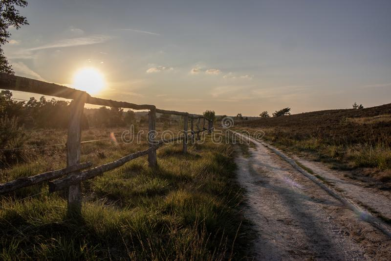 Landbouwgrond bij zonsopgang stock foto's