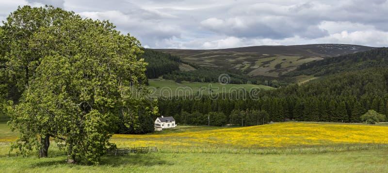Landbouwgrond dichtbij Corgarff-Kasteel in Aberdeenshire, Schotland, het Verenigd Koninkrijk stock foto