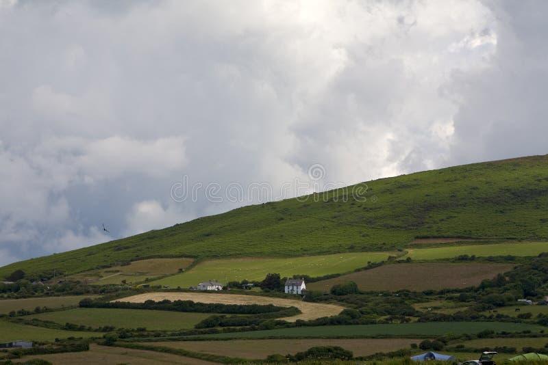 Landbouwgrond op Gower Peninsular stock afbeeldingen