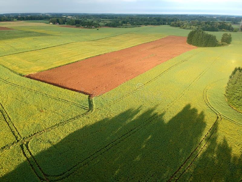 Landbouwgrondlandschap met groene en bruine geploegde gebieden, luchtmening stock foto