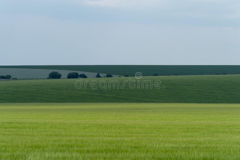 Landbouwlandschap in het gebied van Podolia van de Oekraïne royalty-vrije stock afbeelding