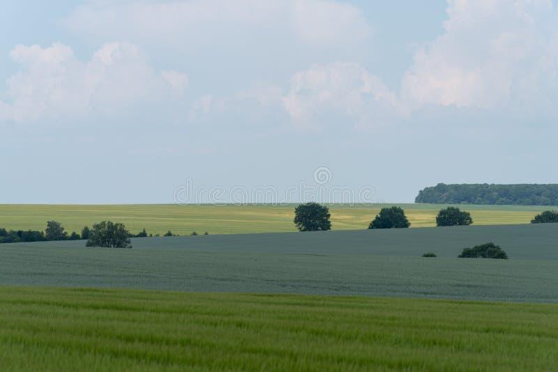 Landbouwlandschap in het gebied van Podolia van de Oekraïne stock foto