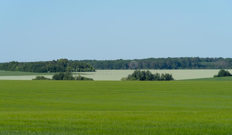 Landbouwlandschap in het gebied van Podolia van de Oekraïne stock afbeeldingen