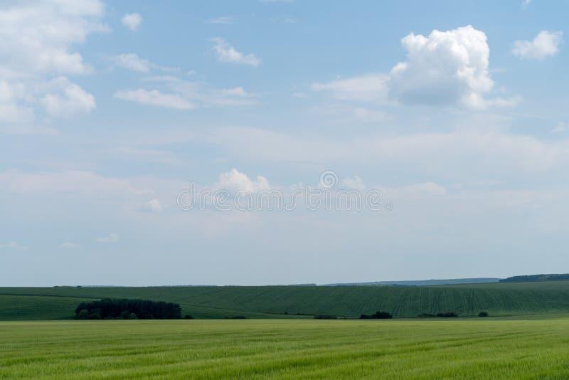 Landbouwlandschap in het gebied van Podolia van de Oekraïne stock fotografie