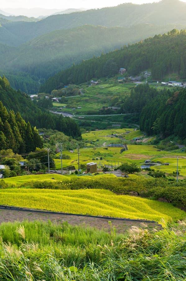 Landbouwlandschap van Aichi-prefectuur Bovengenoemde bak stock fotografie