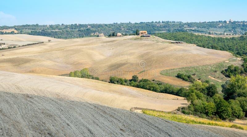 Landbouwlandschap van het gebied van Toscanië, Italië stock foto's