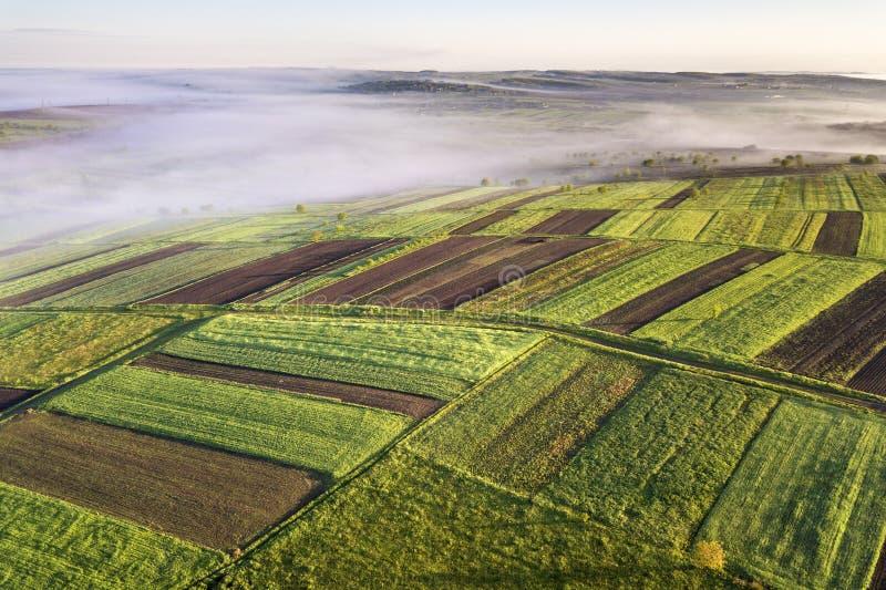 Landbouwlandschap van lucht op zonnige de lentedageraad Groene en bruine gebieden, ochtendmist, duidelijke blauwe hemel stock afbeelding