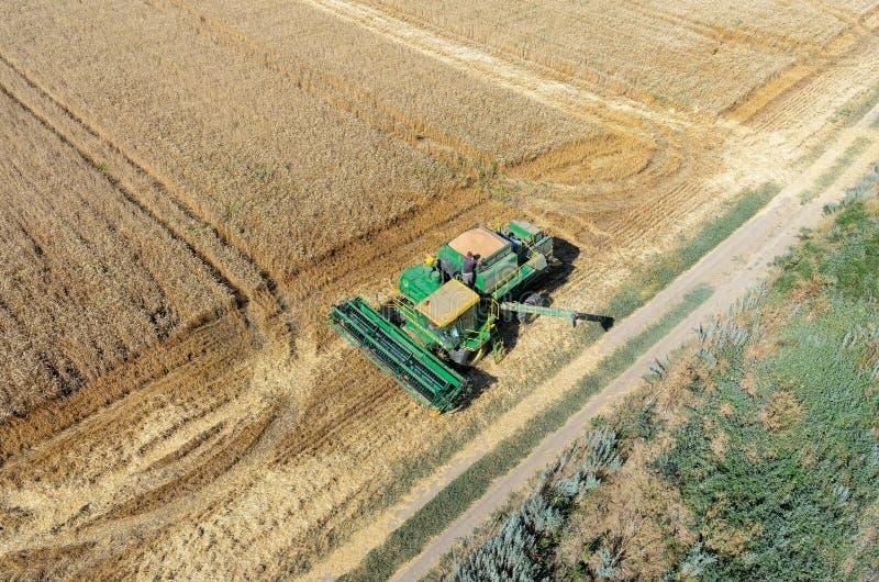 Landbouwmachine het oogsten gewas op gebied stock afbeelding