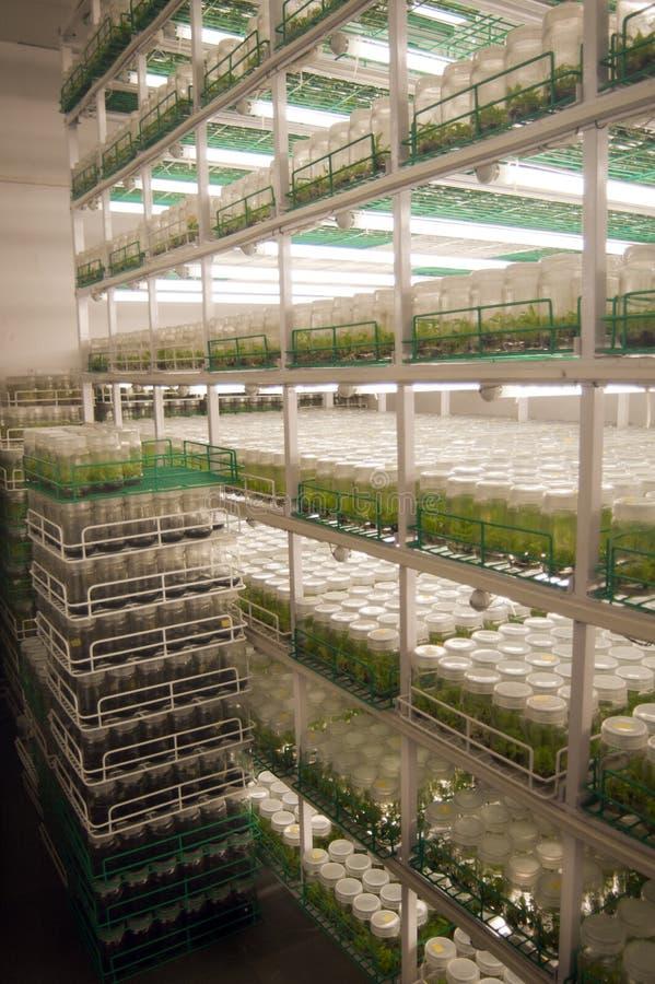 Landbouwonderzoeklaboratoria stock afbeeldingen